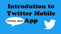 Introduction to the Twitter Mobile App